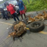Dogs Killed In Motor Accident While Being Transported In Calabar. (Photos)