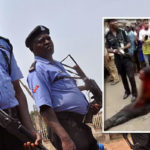 Police Rescue Suspect From Lynching As Angry Mob Pounce On Notorious Car Thief In Abuja (Photos)