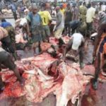 Lagos declares zero tolerance on operators of illegal abattoirs