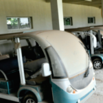 Multi-million naira electric carts acquired 10 years ago rot away at NASS