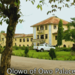 Five shortlisted for Olowo
