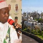 Kano To Convert 5 Forests To Herdsmen Settlements – Gov Abdullahi Ganduje