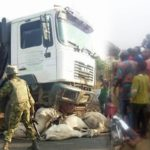 PHOTOS: Many Cows Dead As Lorry, Passenger Bus Collide In Lagos