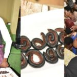 Pastor feeds church members millipede and beer (photos)