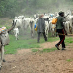 Four Fulani Herdsmen Rape Four Sisters, Suspects Arrested