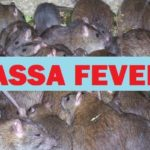 Lassa Fever: 29 Deaths, 195 Confirmed Cases Reported In 11 States ― NCDC