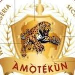 Amotekun and the future of our republic