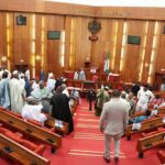 Male Senators Vote Against Addition Of 'Gender Equality' In Nigeria's Constitution