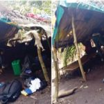 Touching Tales Of Jobseekers Lured To Kidnappers' Den Via Employment Scam
