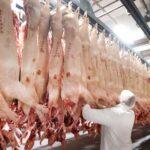 Coronavirus: Hundreds test positive for COVID-19 in German slaughterhouse