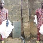 Fake Herbalist Defrauds Couple Of N5m, Husband Dies Of Shock (photos)