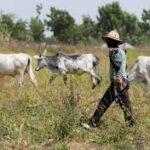 """""""Southern Kaduna Belongs To Us"""" – Hausa-Fulani Nomads"""