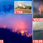 Wildfires burn through California amid record-breaking heat wave