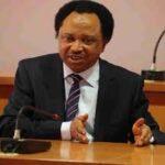 Nepotism will destroy Nigeria, Shehu Sani warns