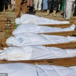 What Boko Haram Did To Us After Slaughtering 78 People Is Exhausting – Mayor Of Zabarmari