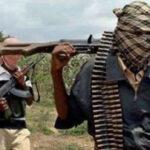 Bandits abduct 80 Katsina students in fresh attack
