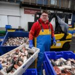 Brexit: EU considers new proposal on UK fishing rights