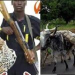 BREAKING: Seven Feared Dead As Amotekun, Herdsmen Clash In Oyo