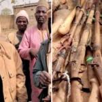 PHOTOS: Amotekun Arrests Truckload Of Herdsmen Going To Ibarapa, Recovers 25 Guns