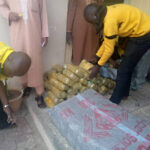 Agency Intercepts Vehicle With 172 Parcels Of Indian Hemp Worth N30m In Kano (Photos)