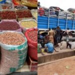 RE: STOPPAGE OF MOVEMENT OF FOOD ITEMS FROM NOTHERN NIGERIA TO SOUTHWESTERN NIGERIA SHOULD BE A BLESSING IN DISGUISE — A WAKE UP CALL (PHOTOS)