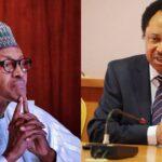 Stop Issuing Warnings To Bandits In English – Shehu Sani Advises Buhari