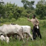 Ekiti gives farmers, herders two more weeks to register or quit forest