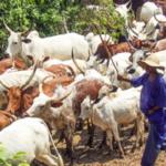 Six Herdsmen Shot Dead In Osun