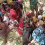 Kaduna Abduction: Shehu Sani, Aisha Yesufu React To Bandits Flogging Of Students (VIDEO)