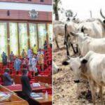Senate Moves To Create Database For Livestock