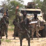 Boko Haram: Dozens Arrested As Security Agents Crackdown On Terrorism Financiers Nationwide