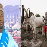 Why Herdsmen Are Killing, Kidnapping – Miyetti Allah
