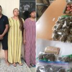 PHOTOS: Five Arrested As NDLEA Busts Online Drug Trafficking Cartel In Abuja