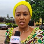 Democracy Day: Nigeria more divided today than in 1999 – Ekwueme's daughter
