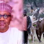 Herdsmen: Buhari Backs Open Grazing, Issues Fresh Directive To AGF Malami
