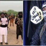 Boko Haram: Uncertainty in Northeast over death of Shekau, rise of Bakura Modu