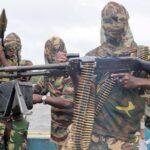 'Stop Asking Buhari For Peanuts' – Biafra Group Tells Niger Delta Avengers