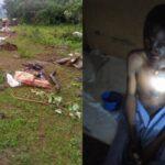 Thunderstrike kills seven cows, injures two herders in Alla, Kwara