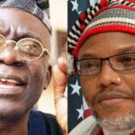 Buhari Govt Lied, May Have Drugged Nnamdi Kani – Falana