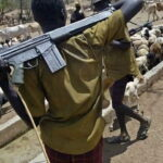 Southern Kaduna: Herdsmen kill 100 people in six days, houses, valuables destroyed