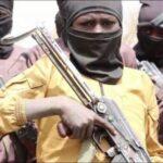 Boko Haram Militants Kill Cameroonian Soldiers