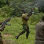 Bandits Use Same Weapons Bought By Buhari Regime To Terrorise Nigerians – Akintoye, Nwodo Write US To Stop Sale Of Arms