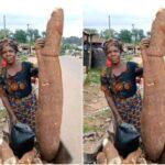 Nigerians React As Female Farmer Shows Off Huge Cassava Tuber She Harvested