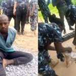 Man heading to Plateau arrested with 320 bullets, magazines, others escape (photos)