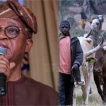 Anti-open grazing law: We are not witch-hunting herdsmen – Osun Govt