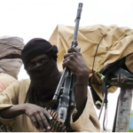Afenifere Cries Out Over Boko Haram, Bandits' New Camps
